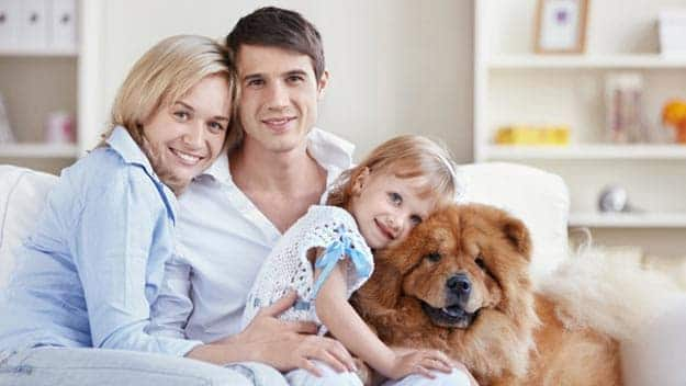 Wills & Trusts dog-young-family Direct Wills Royal Tunbridge Wells
